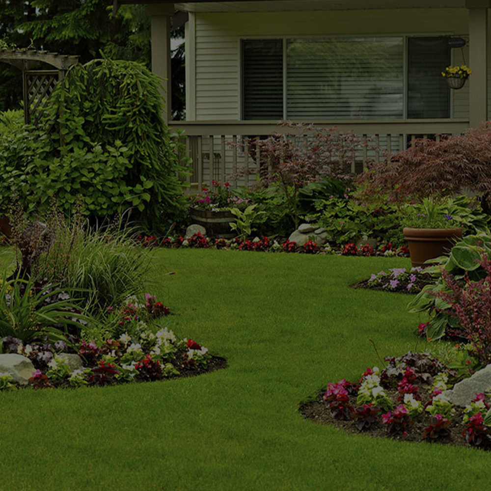 Landscaping Company Services
