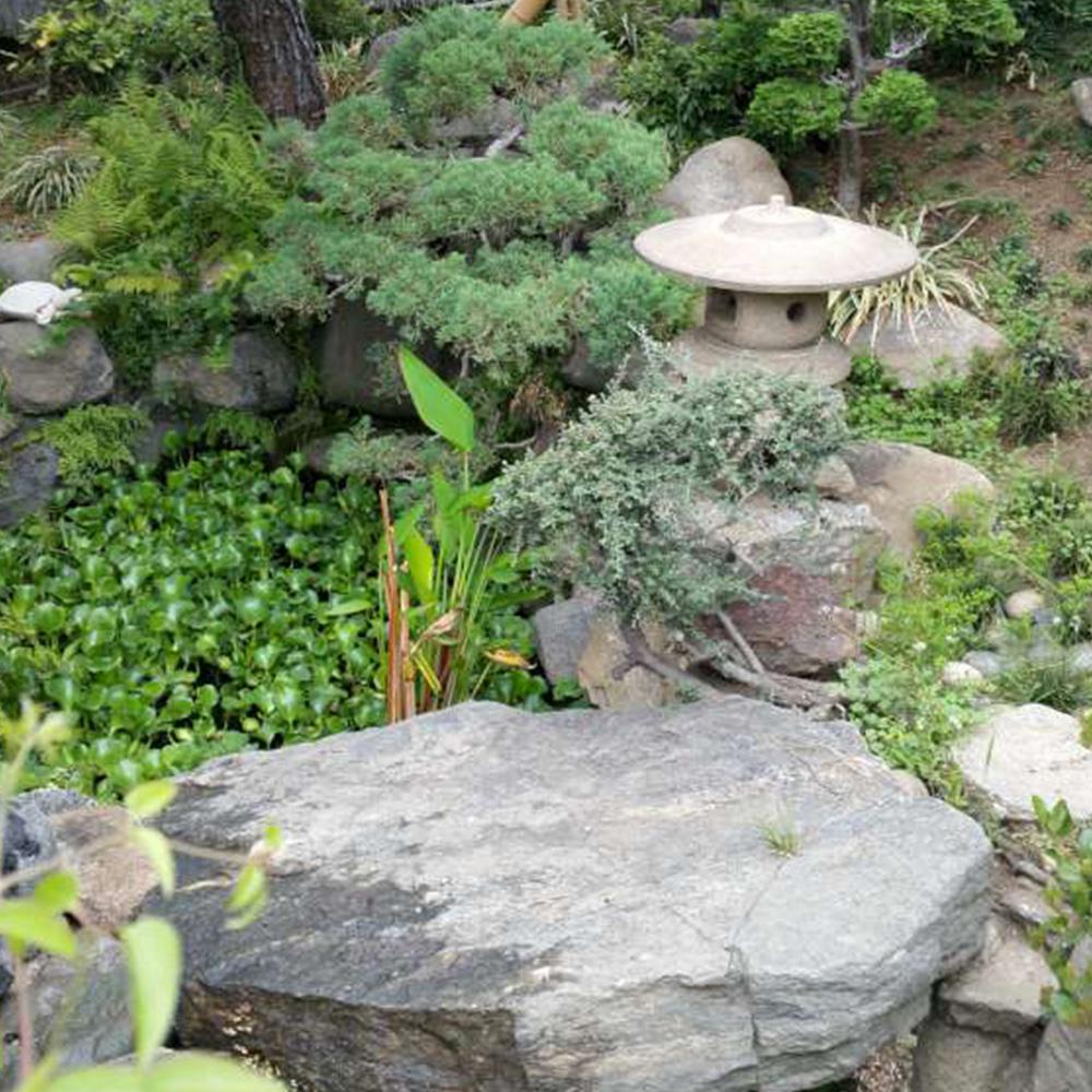 Residential Landscape Restoration Service